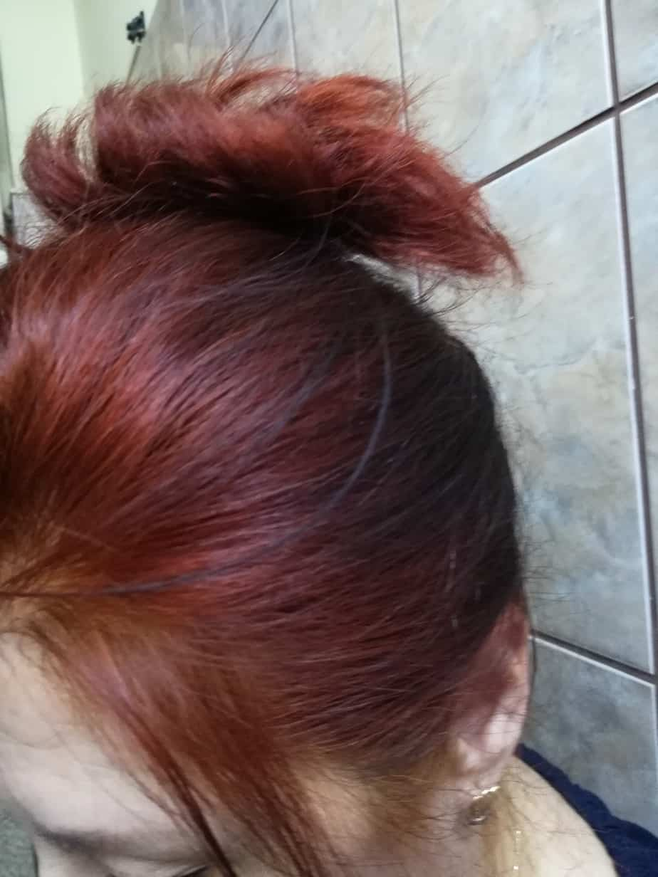 Copper Red Lavy
